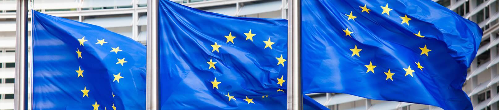 Ricerche nella Comunità Europeaa per Brevetti Modelli e Marchi Siena